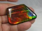 Ammolite Cabochon, Alberta, Canada, 103 carats,