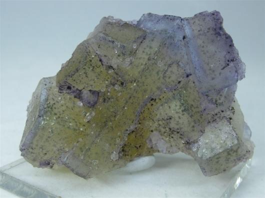 Fluorite w/ Chalcopyrite Specimen, Multi Color Zoned, Illinois,  (SCab)