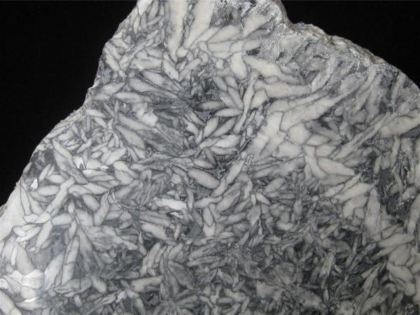 Pinolite, Polished Slab, Austria